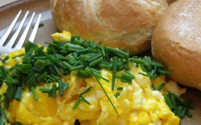 breakfast-876432_1920